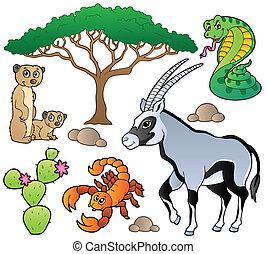 savana, animali, collezione, 1