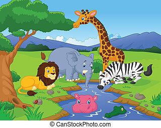 savana, scenario, cartone animato, anima