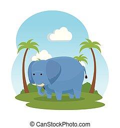 savana, selvatico, elefante, carattere, africano