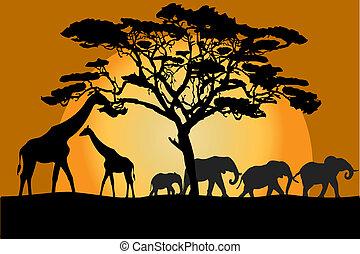 savane, animaux, paysage