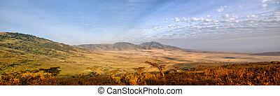 savann, panorama, serengeti, afrikansk