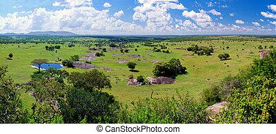 Savanna landscape in Serengeti, Tanzania, Africa