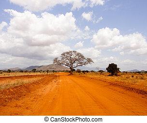 Savanna road