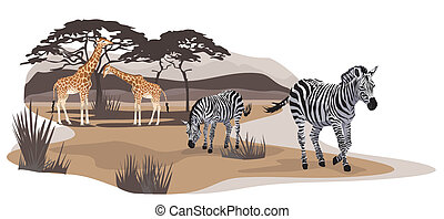Savannah Animals - Illustration of zebras and giraffes on...