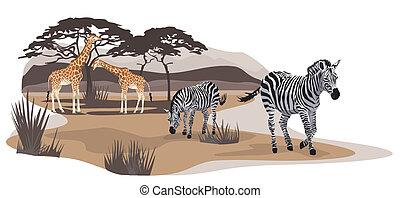 Savannah Animals - Illustration of zebras and giraffes on...