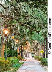 Savannah, Georgia, USA tree lined sidewalks with hanging spanish mosss.