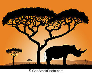 Savannah - rhino. Dawn in the African savanna. Silhouettes...