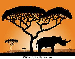 Savannah - rhino. Dawn in the African savanna. Silhouettes ...
