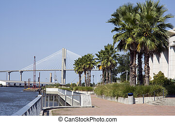 tropical walkway along the riverwalk near the convention center in Savannah GA