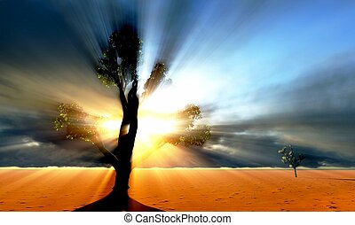 savannah, solitário, árvore, africano