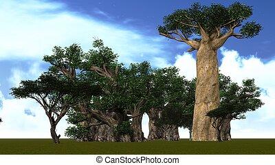 savanne, afrikanisch