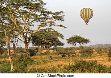 savanne, balloon, vliegen, geel groen, op