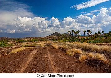 savanne, straße, afrikanisch