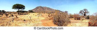 savanne, tansania, afrikas