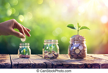 Save Money And Investment Concept Plants Growing Up In Jars