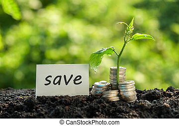 save money for investment concept