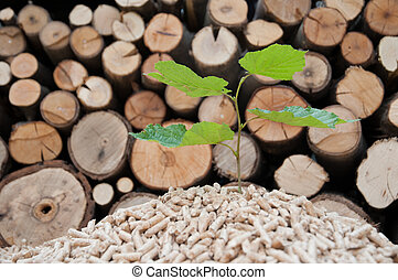 Save the Nature - Young tree comes out of heap of pellets