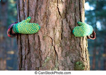 save tree concept: hands around the pine
