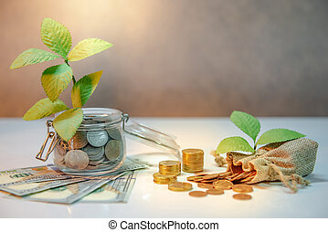 Saving money concept. Plant growing out of coins