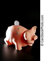 saving money in crisis time