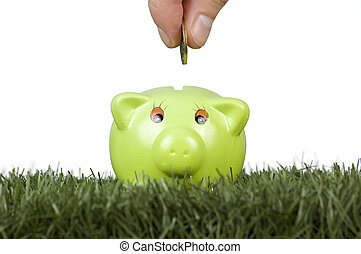 saving money on a piggy-bank