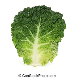 Savoy cabbage leaf isolated over white background.