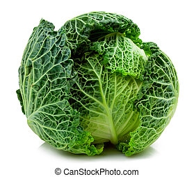 Savoy cabbage isolated on white for you design