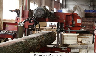 saw machine log plant lumber