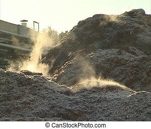 sawdust organic fuel - Evaporating pile of sawdust near...