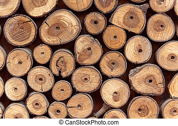 Sawed wood background. Decor of wall.