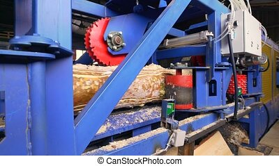 Lumber industry - modern cutting line in sawmill - Sawmill,...