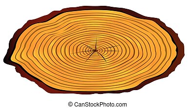 Sawn Log Section - A section of a sawn log as used for a...