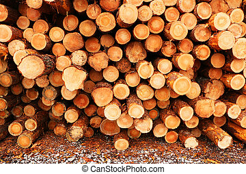 Sawn logs of trees piled on the ground.