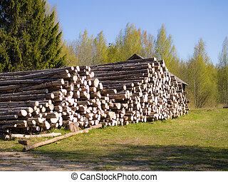 pine logs on the ground