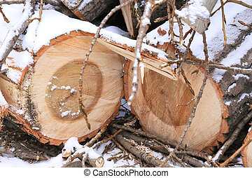 sawn wooden logs with annual rings and small twigs in the snow