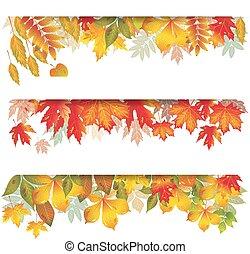 sazonal, bandeiras, de, outonal, folhas