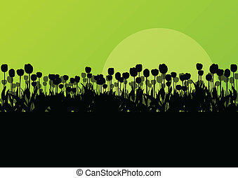 sazonal, detalhado, conceito, jardim, tulips, vetorial,...