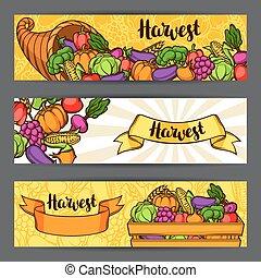 sazonal, festival, legumes, ilustração, outono, banners., frutas, colheita