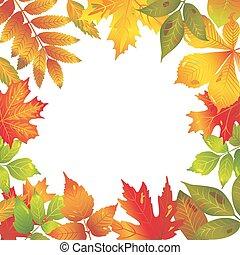 sazonal, folhas, quadro, outonal