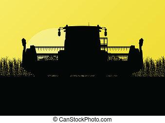 sazonal, harvester, cena, ilustração, campo, vetorial, grão...