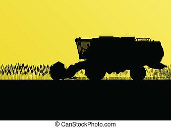 sazonal, harvester, cena, ilustração, campo, vetorial, grão,...