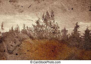 sbiadimento, foresta