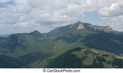 scène, au-dessus, voler, montagne, forêt, bourdon, été