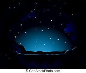 scène, forêt, nuit