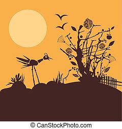 scène nature, à, coucher soleil