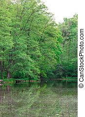scène tranquille, lac