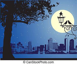 scène urbaine, idyllique, nuit