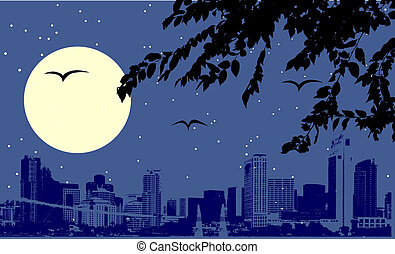 scène urbaine, nuit