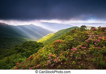 scénique, nord, route express, arête, bleu, photographie, appalachian, caroline, montagnes, paysage