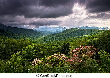 scénique, nord, route express, arête, printemps, bleu, photographie, appalachian, caroline, montagnes, paysage